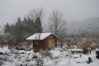 2010冬南庭.jpg