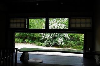 2012 5 30 トサシモツケ.jpg